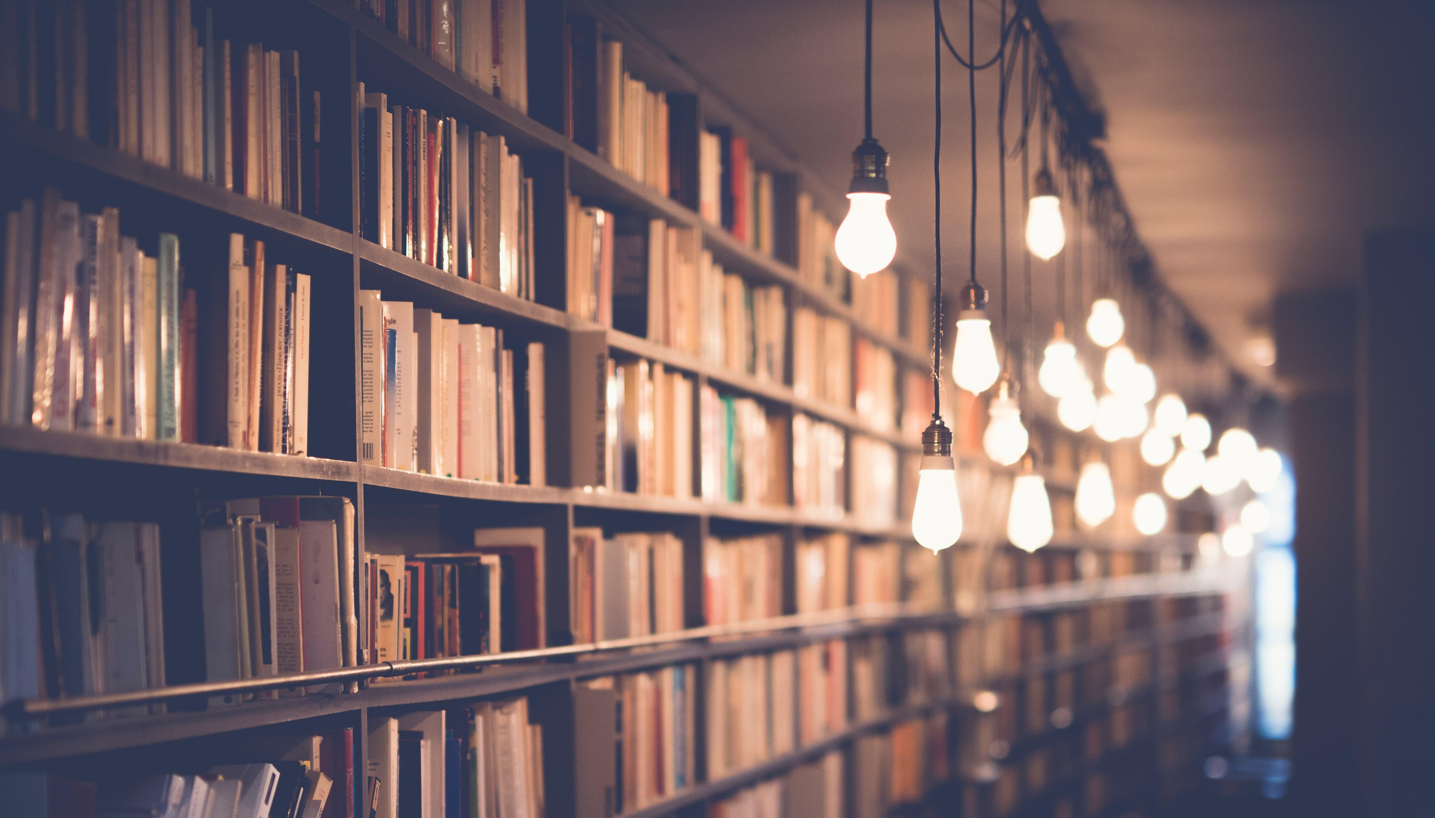 firmaowa biblioteka podręcznik vray